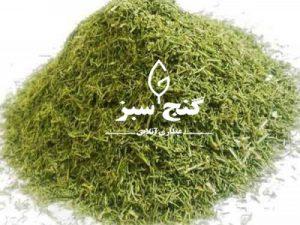 شوید - گنج سبز